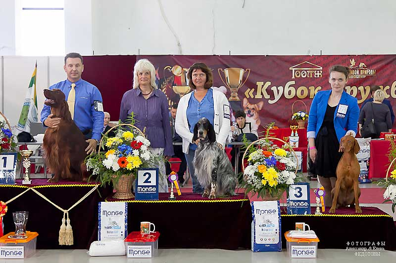 FCI group VII - Winners CACIB «Friendship Cup - 2015» + mono-breed shows, Tyumen 4-5 July 2015