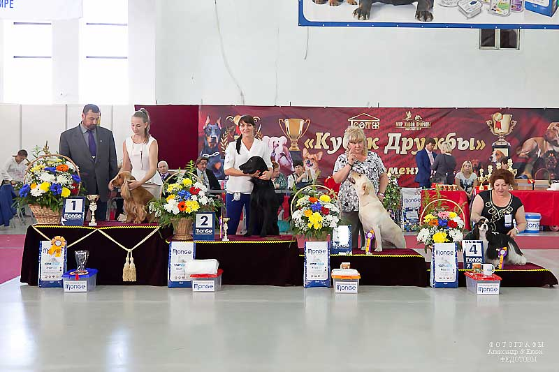 FCI group VIII - Winners CACIB «Friendship Cup - 2015» + mono-breed shows, Tyumen 4-5 July 2015