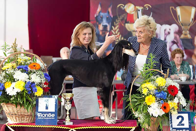 FCI group X - Winners CACIB «Friendship Cup - 2015» + mono-breed shows, Tyumen 4-5 July 2015