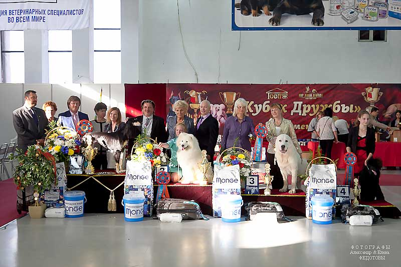 Best in Show - Winners CACIB «Friendship Cup - 2015» + mono-breed shows, Tyumen 4-5 July 2015